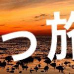 fc2blog_2016101610072251a