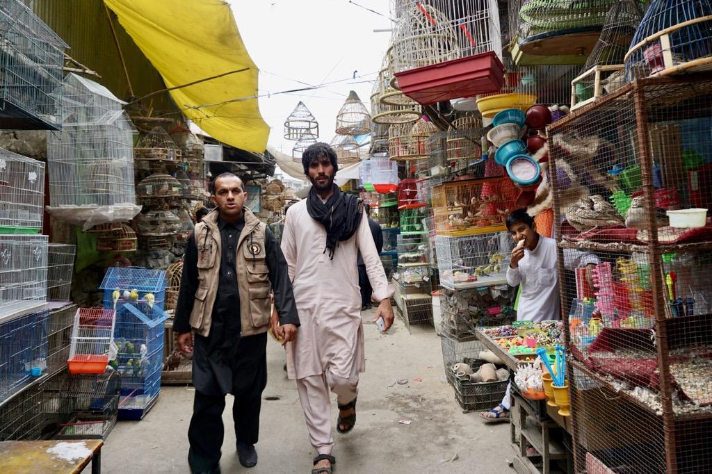 カブールのバードマーケット