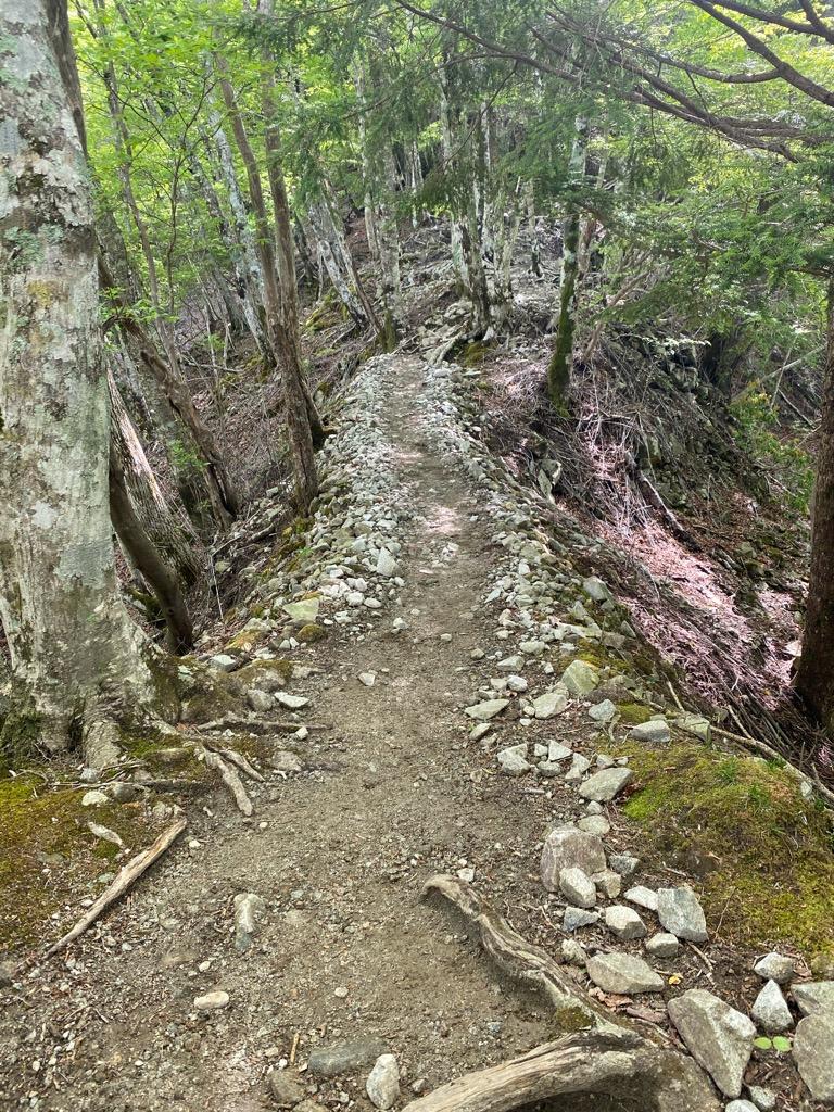檜洞丸への登山道